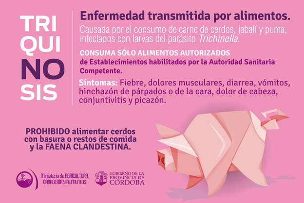 afiche triquinosis para gacetilla • Canal C