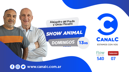 CANAL C Banner SHOW ANIMAL • Canal C