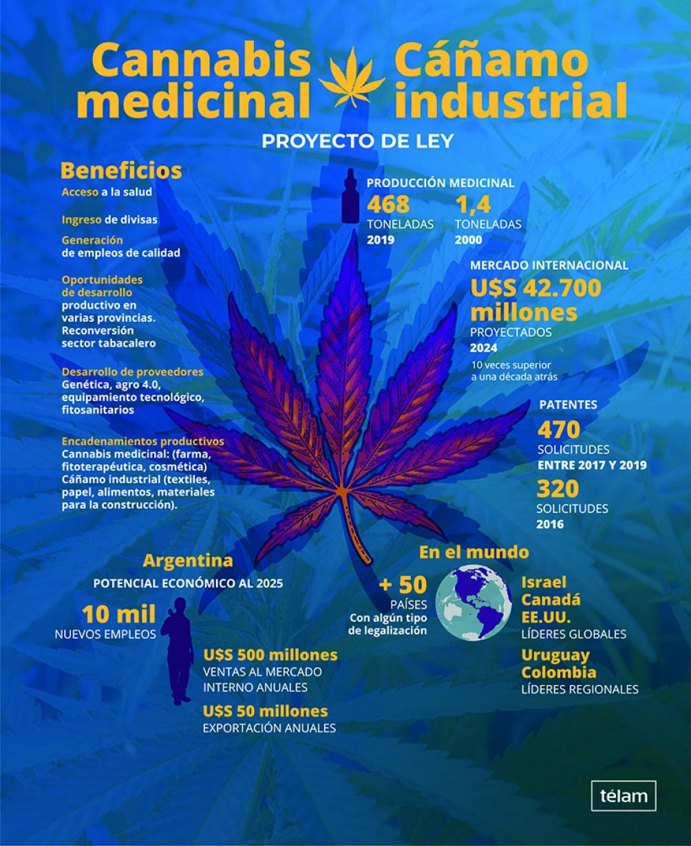 El Senado tratará el proyecto para regular el uso de cannabis medicinal • Canal C